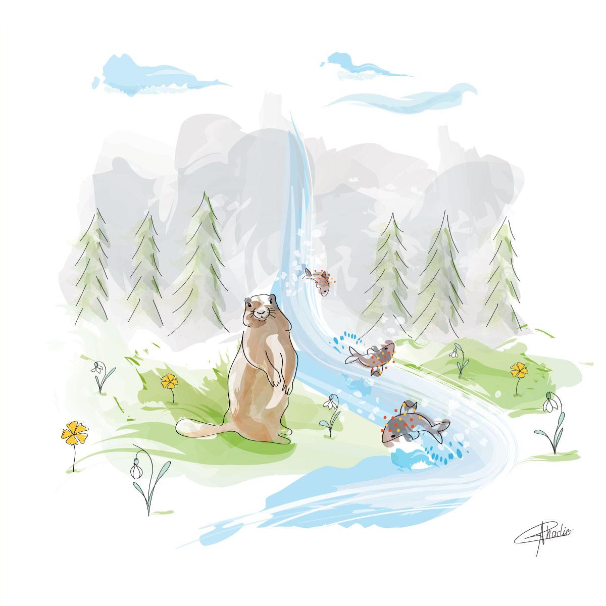 tableau affiche marmotte